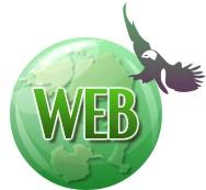 Sociální sítě - web - reklama